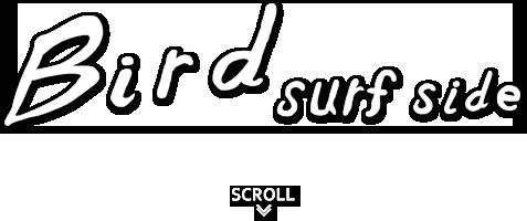 Bird Surf